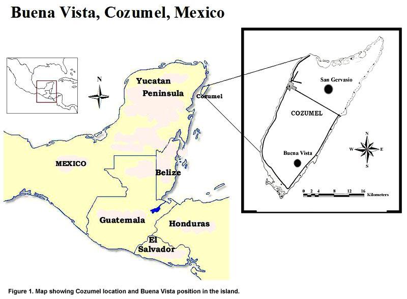 Famsi C 2004 Adolfo Ivan Batun Alpuche Maya Settlement Patterns