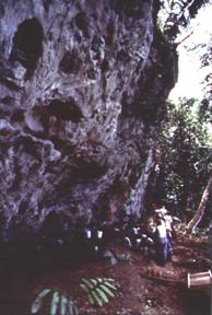 Link to Figure 4. Excavación en C.B.R.S. (1995).